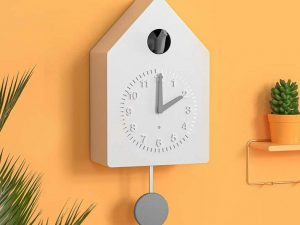 Amazon Smart Cuckoo Clock 1