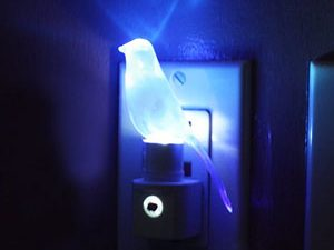 Blue Canary Night Light