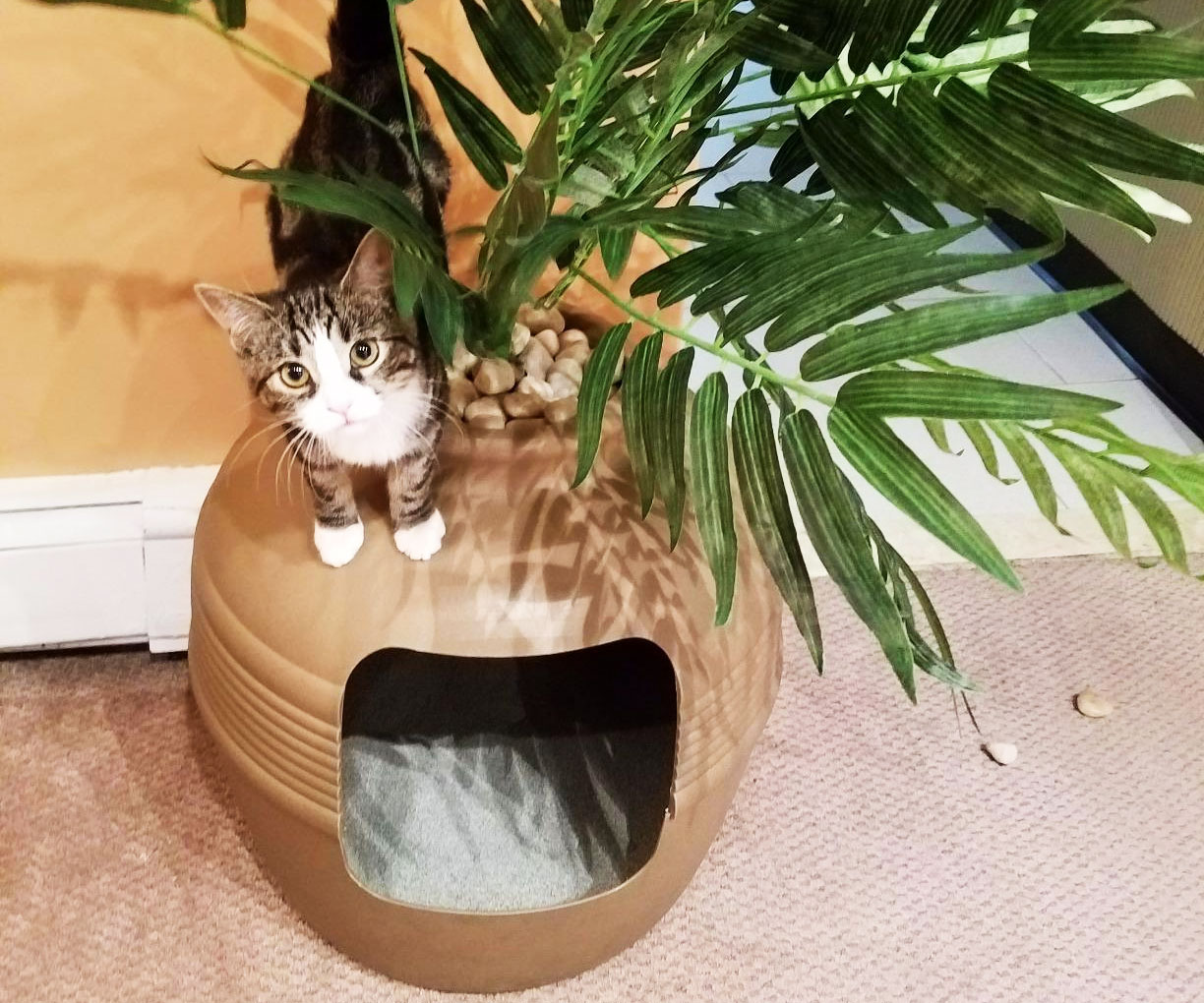 Clay Planter Hidden Cat Litter Box