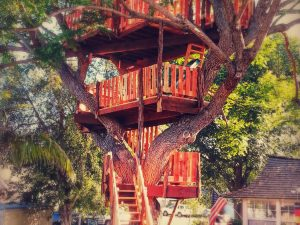 Custom Built Treehouses 1