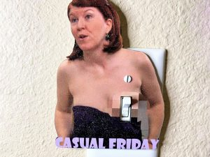 Flashing Meredith Light Switch Cover