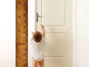 Growth Chart Ruler Decal