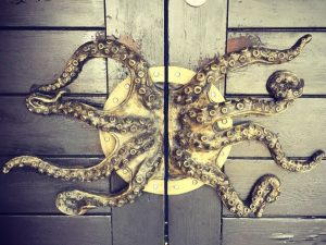 Octopus Door Handles