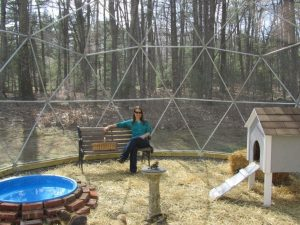Outdoor Geodesic Dome 1