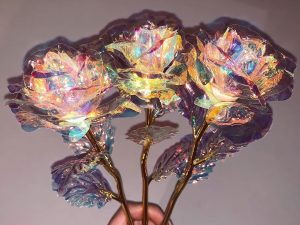 Sparkling Galaxy Roses 1