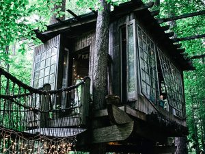 Treehouse Cabin Rental 1