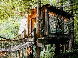 Treehouse Cabin Rental