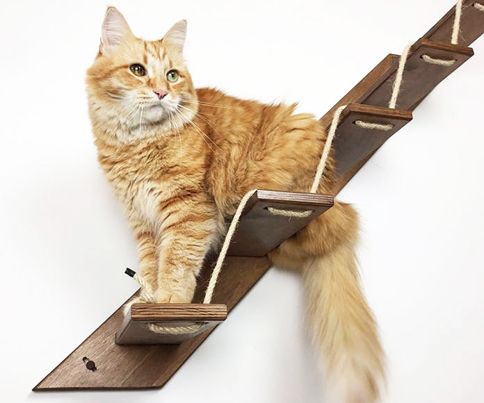 Wall Mounted Cat Stairs 1